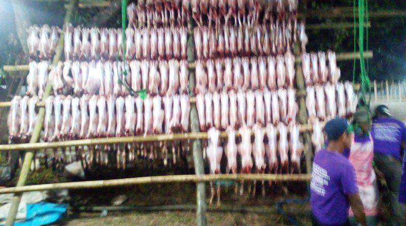Peringati Hari Raya IDUL ADHA 2020, ROUDHOTUSSALAF Indonesia Gelar Acara PEMBAGIAN Daging QURBAN Selama Tiga Hari Berturut-turut