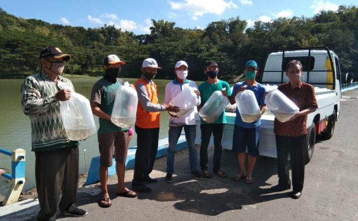 Pertahankan Ekosistem 35 Ribu Bibit Ikan DiLepas di Embung Duwet Sewu